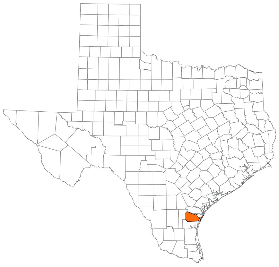 Nueces County icon